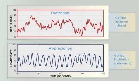 StressreductionProgram2
