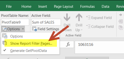 Show Report Filter Pages