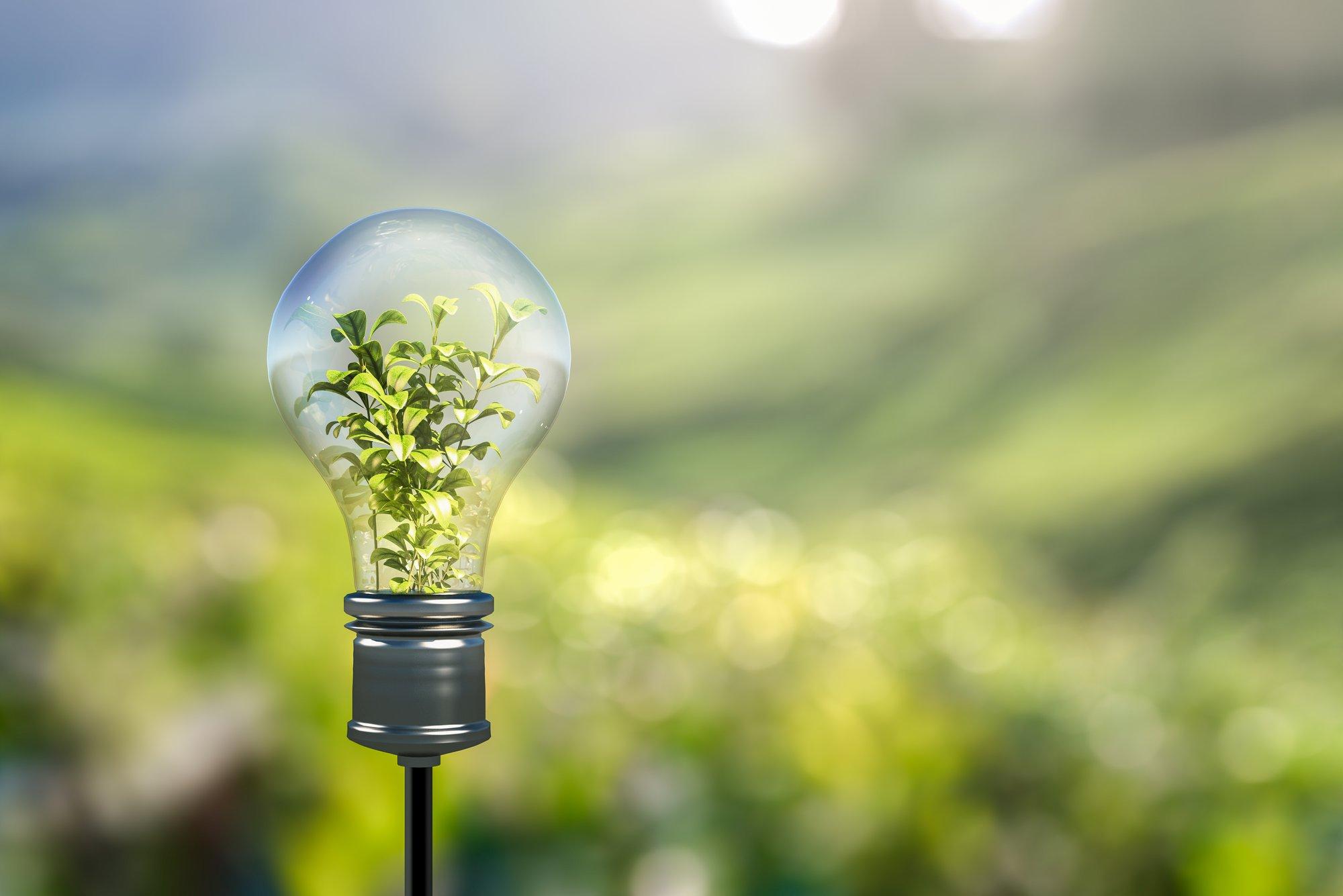 Met welke wijzigingen moet u in 2020 rekening houden op het vlak van de milieuwetgeving in Vlaanderen?